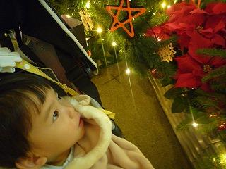 111215_ヒルズクリスマス