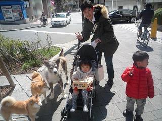 120325_お散歩中