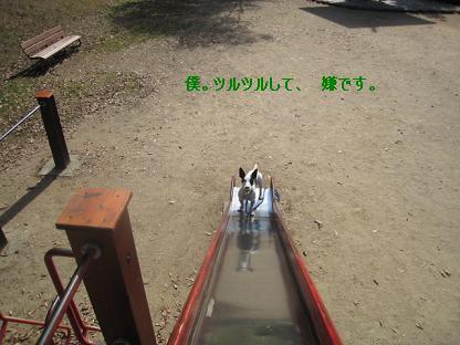 20071109212740.jpg