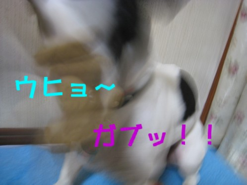 20071119202203.jpg