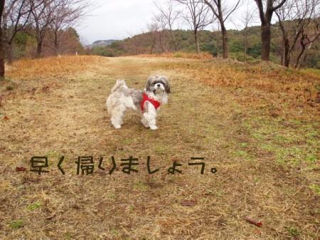 080203岳ノ木場 007ーう