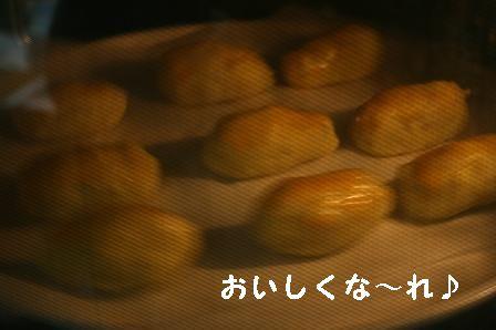 1205-01.jpg