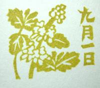 DSCN3846.jpg