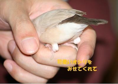 20110505_1079.jpg