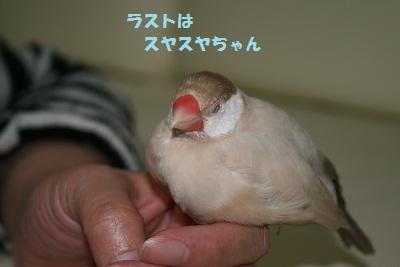 20110505_1105.jpg