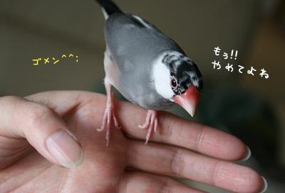20120401_2475.jpg