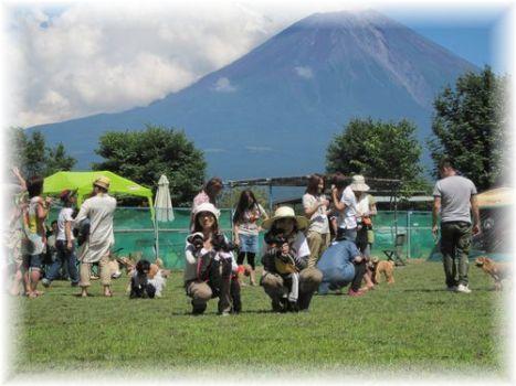 富士山ばっく