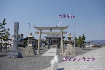 IMGP0488.jpg