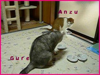anzugure10.jpg