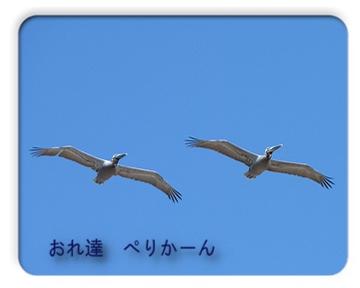 FC2_May8_13.jpg