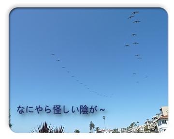 FC2_May8_6.jpg