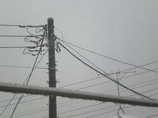 物干し竿越しに見える、電信柱。