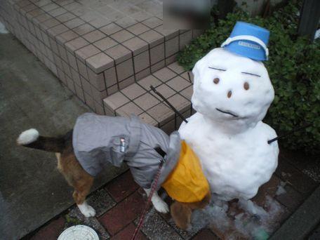雪だるま♪よく出来てるね!