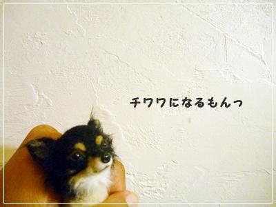 ○P1160525