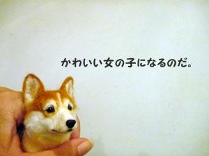 ○P1160780