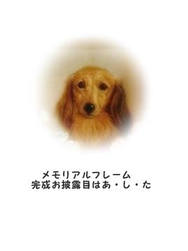 ○P1170123