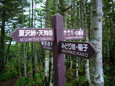 ■0707 八ヶ岳登山 100