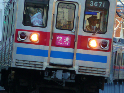 P1040453.jpg