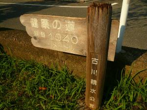P1360908.jpg