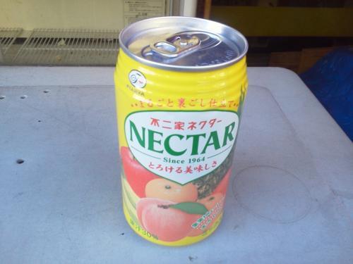 20100107_Nectar-001.jpg