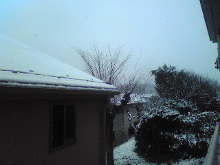 この冬初めての積雪