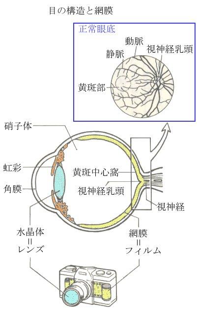 01_eye.jpg