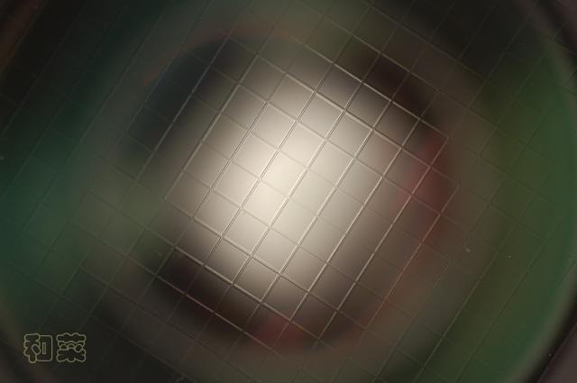 071028-DSC_6377.jpg