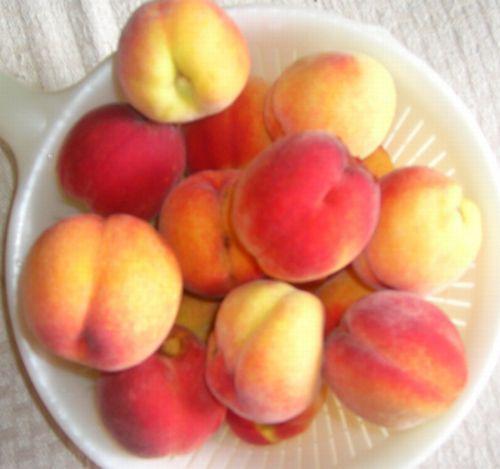 ボナンザの桃