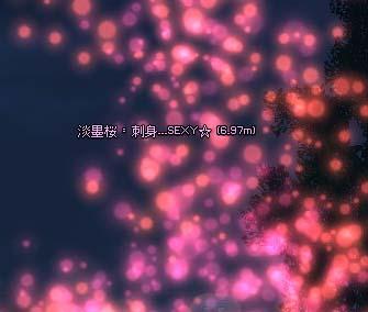 mabinogi_2006_08_27_005.jpg