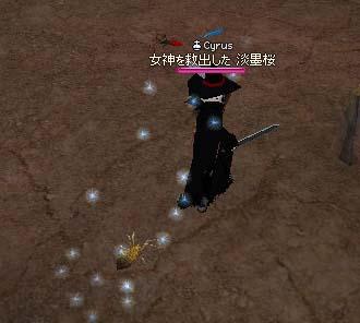 mabinogi_2006_10_10_002.jpg