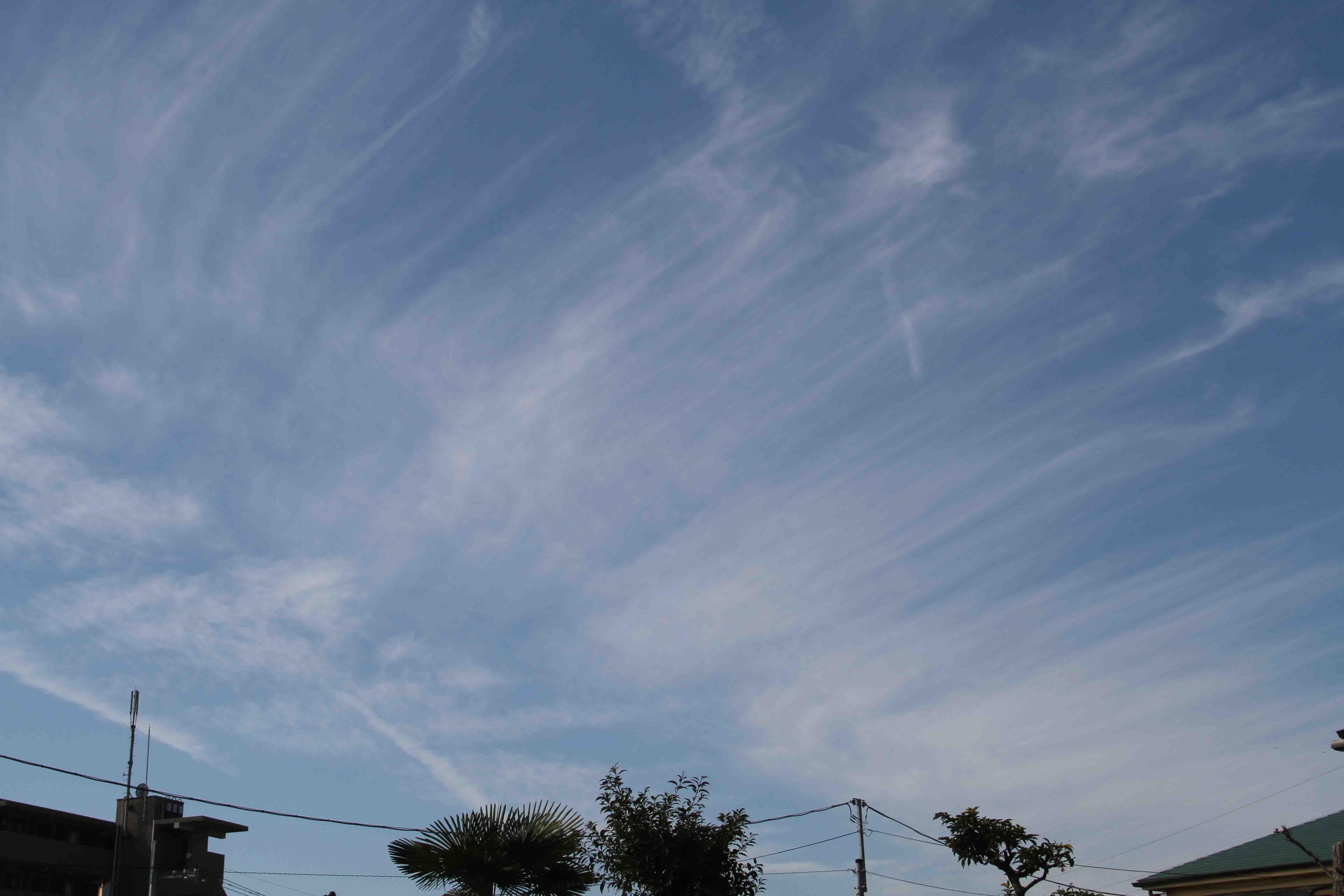 11月26日 東京の空(11時16分)
