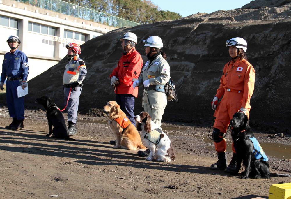 総合震災消防訓練(13)