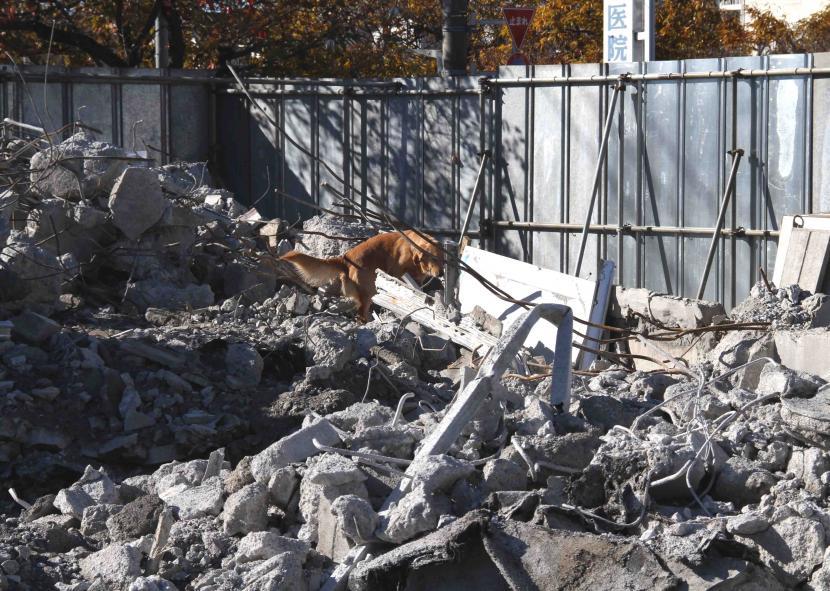 12月4日 瓦礫捜索訓練 GRMとMDS(4)