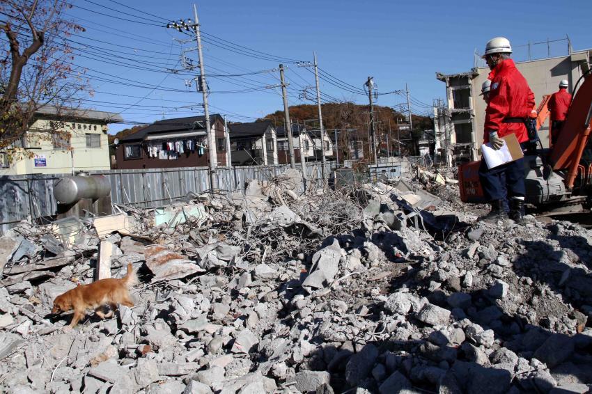 12月4日 瓦礫捜索訓練 GRMとMDS(6)