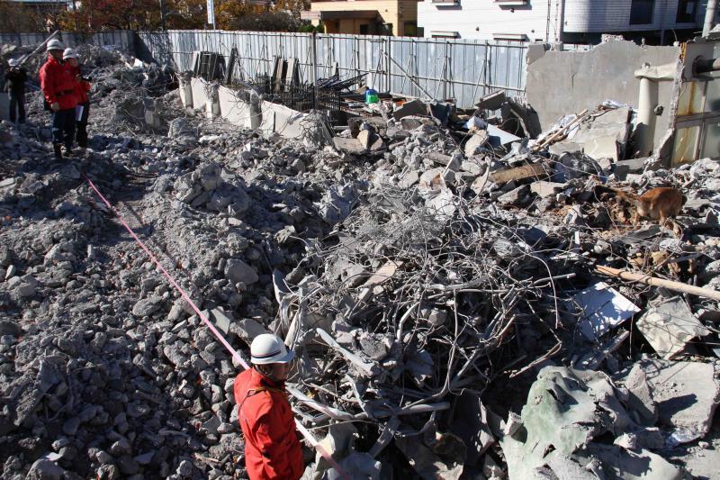 12月4日 瓦礫捜索訓練 GRMとMDS(7)