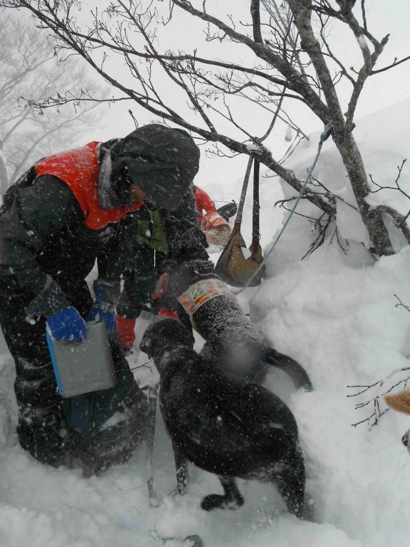 雪中訓練(9)