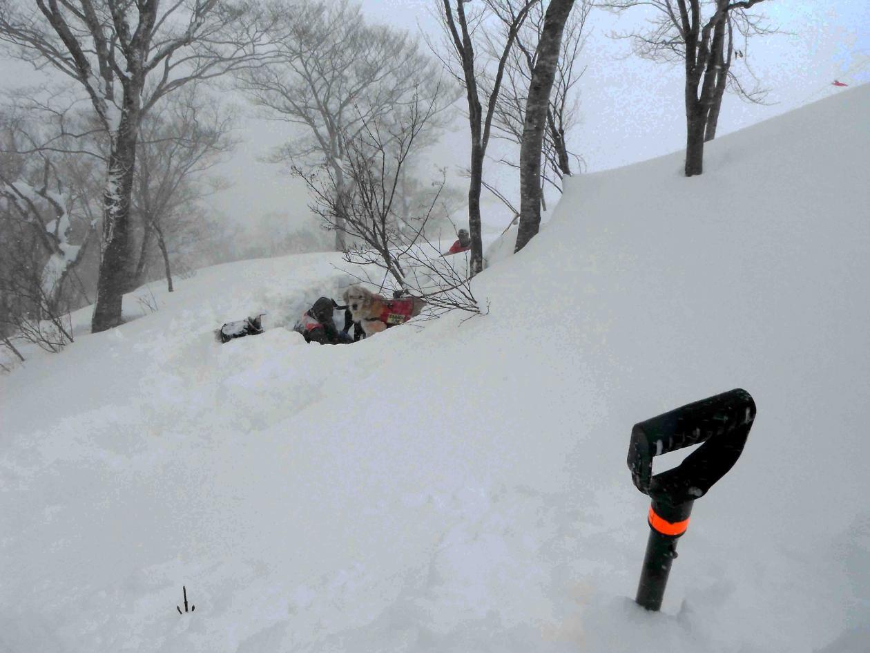雪中訓練(11)