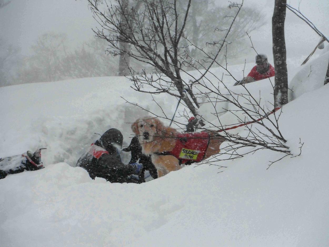 雪中訓練(12)