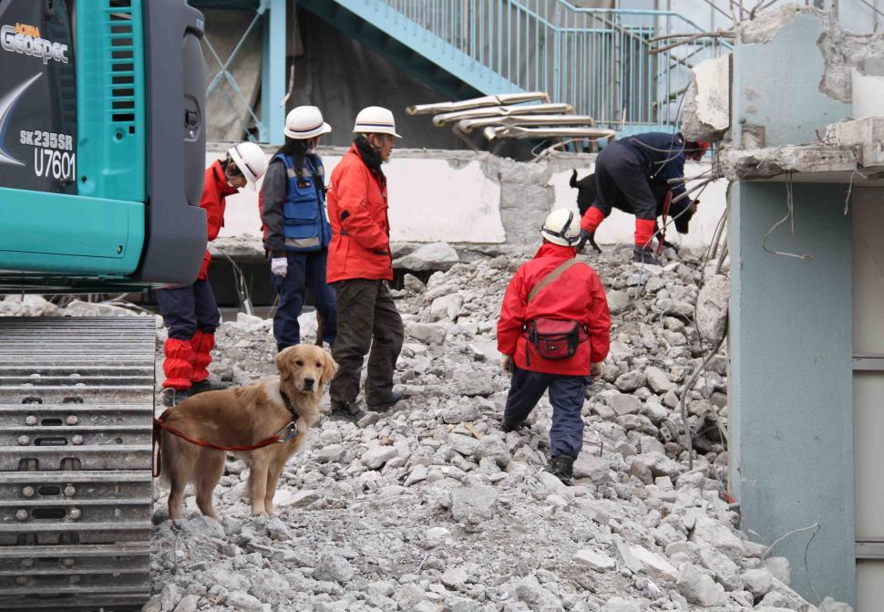 1月15日瓦礫訓練(21)