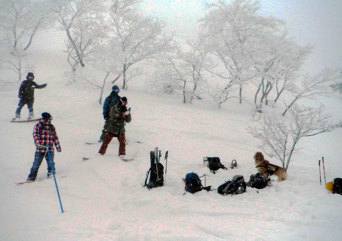 関東雪崩講習会(15)