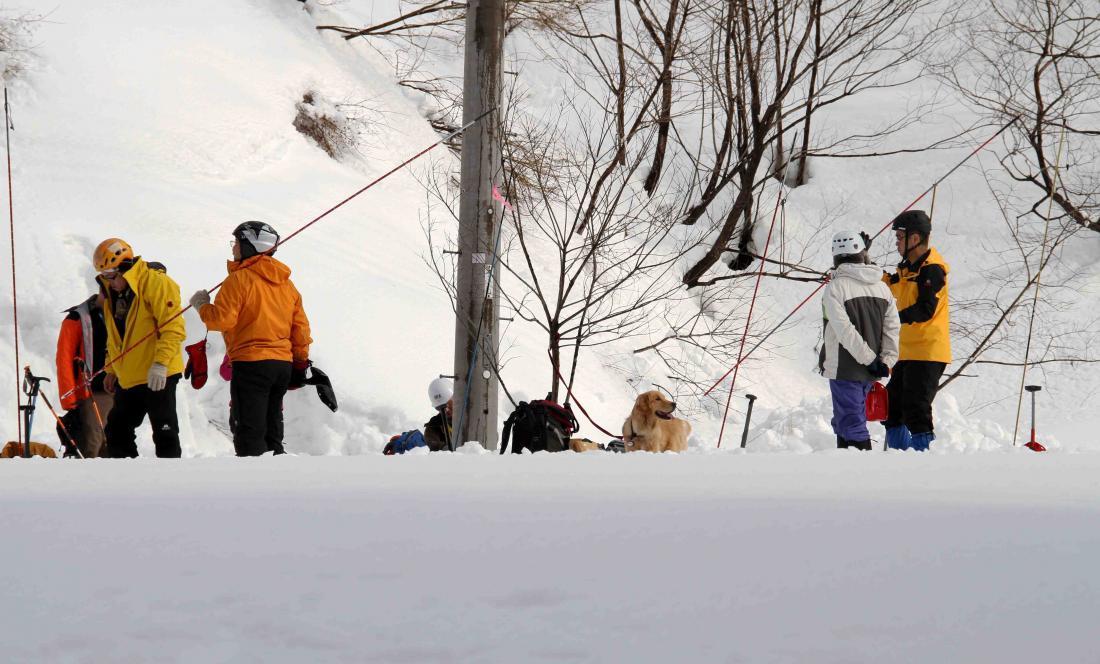 関東雪崩講習会(25)