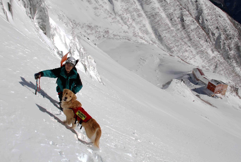 0211 稜線直下の雪面で