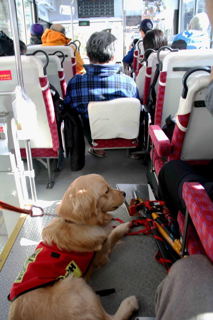 0212 下山(10) バス乗車