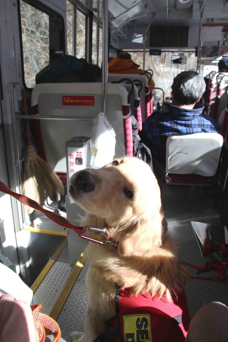 0212 下山(11) バス乗車