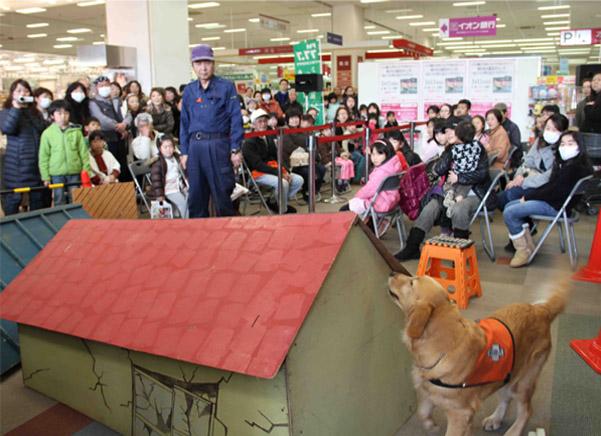 救助犬デモ 3.11 (6)