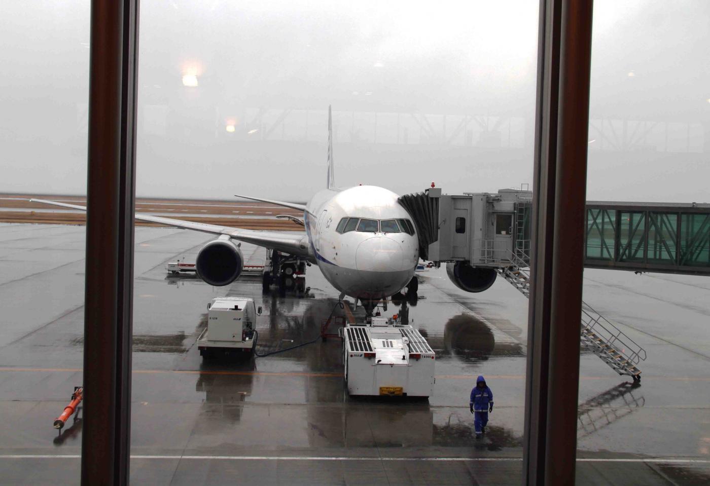 帰りの飛行機(4)
