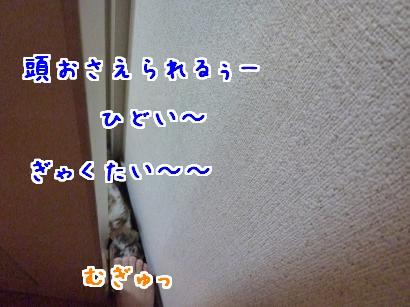 玄関攻防3