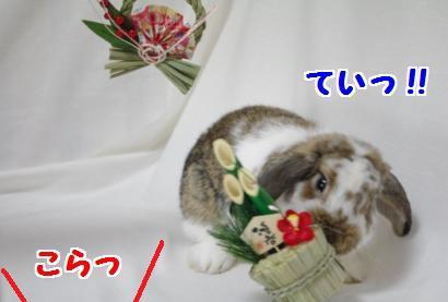 撮影会5convert_20111206193141