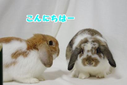撮影会6convert_20111206193732