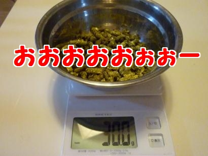 P1100039_convert_20120111105900.jpg